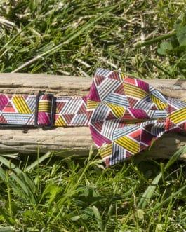 Nœud papillon Triangles Multicolores